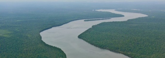 Amazon-River-From-Above-485x728